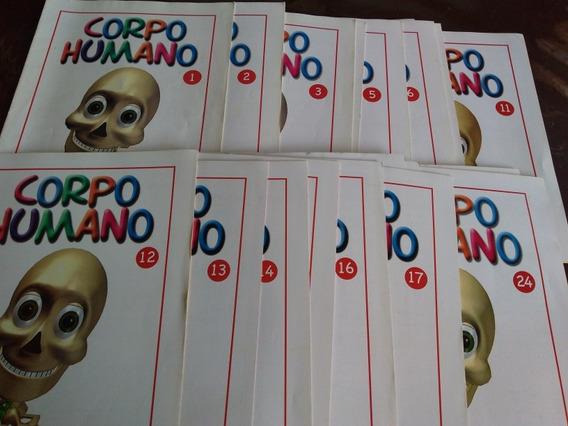 Coleção Corpo Humano Salvat 1 Ao 24 /2006 Completa