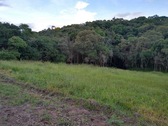 L.s Lançamento Otimos Preços Terrenos Direto C/proprietario