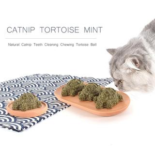 Catnip Bola Catnip Juguete Tortuga Menta Tortuga Natural Cat