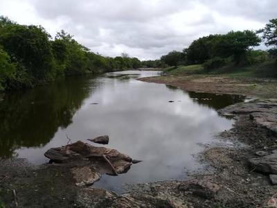 Fazenda Localizado(a) No Bairro Zona Rural Em Riachão Do Jacuípe / Riachão Do Jacuípe - 3677