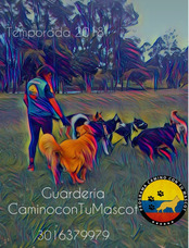 Guardería Canina -urbana