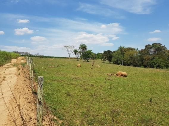 Sitio De 45.000 Metros A 2 Km Do Asfalto Entre Artur Nogueira E Mogi Mirim - 985