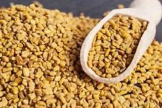 Semilla Fenogreco Salud Alholva Methi Organica Premium India