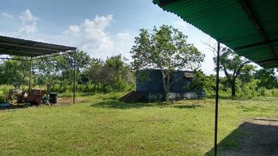 Se Vende Finca Agropecuaria En Sector El Pinto, Monagas