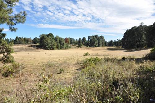 Imagen 1 de 12 de Amplio Rancho: Privado, Verde Y Fértil