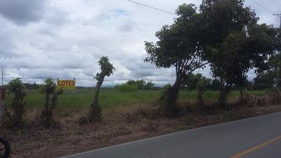 Lote Via Pueblo Tapao