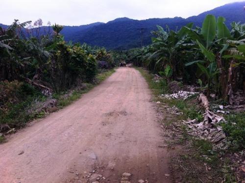Sítio Com Nascente Para Plantação Ou Pesqueiro Em Itanhaém.