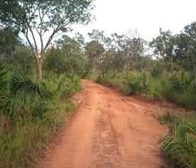 Fazenda Piauí - 1736f