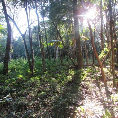 Terreno Condominio Fechado C/nascente, Parceclado, Ref:04516