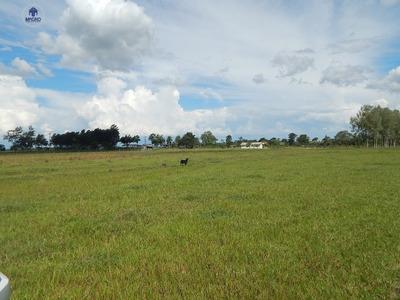 Fazenda Rural Bairro Inválido, Cidade Inexistente - Fa0002. - Fa0002