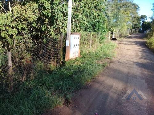 Chácara À Venda, 8000 M² Por R$ 480.000,00 - Gleba Ribeirão Cafezal - Londrina/pr - Ch0031