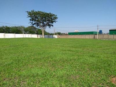 Terreno Residencial À Venda, Parque Residencial Buona Vita, São José Do Rio Preto. - Te0733