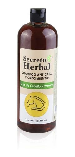 Imagen 1 de 10 de Shampoo Secreto Herbal Anticaida Cola Caballo Romero 1 Lt