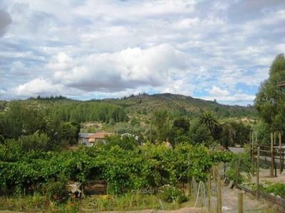 Cauquenes Camino A Chanco / Tutuven