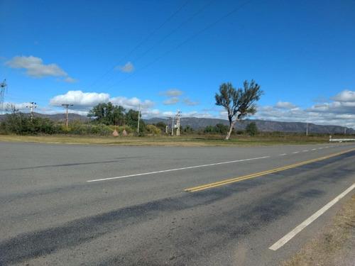 San Luis Ruta 20 150 Has Sobre Ruta Ganaderas