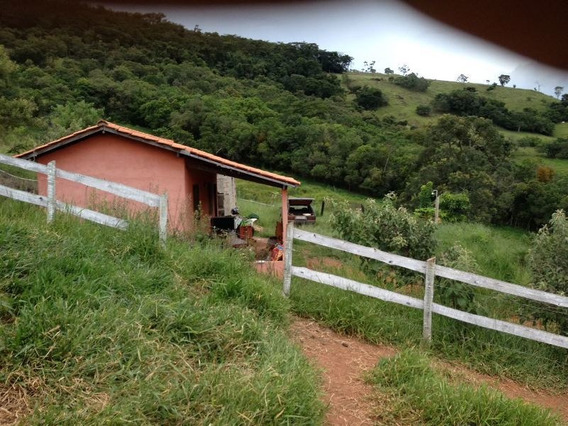Sítio No Sul De Minas , Cidade De Baependi , Próximo A Cachoeira Do Gamarra , Com 15.000 M2. - 236