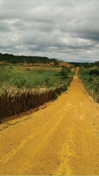 Exelente Área No Piauí