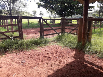 Fazenda 213 Hectares Br153 Em Comendador Gomes - Mg - Fa0001