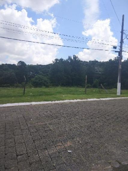 Terreno Em Gramado, Cotia/sp De 0m² À Venda Por R$ 238.000,00 - Te319853