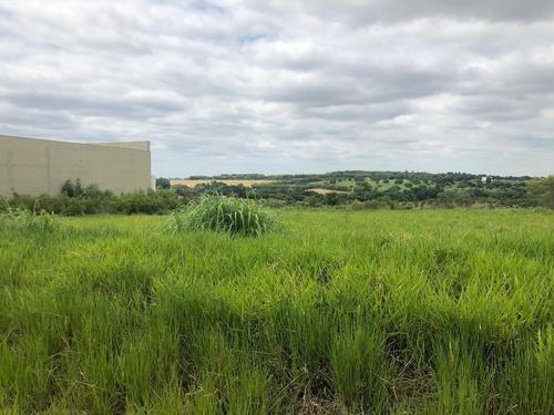Terreno À Venda, 1261 M² Por R$ 505.000,00 - Jardim Industrial Dante Siani - Nova Odessa/sp - Te0234