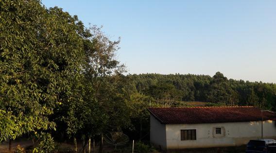 Sitio/chácara A Venda Em Piedade/pilar Do Sul -