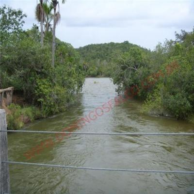 Venda - Fazenda - Zona Rural - Alegrete Do Piauí - Pi - D8148