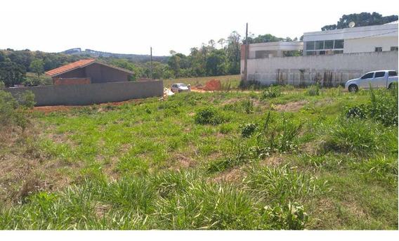 Lote De Esquina - 2 Quadras Da Av. São João - Prudentópolis