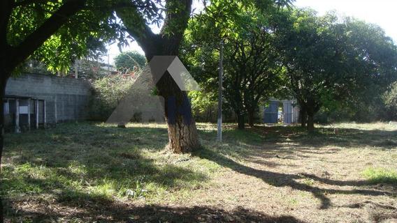 Terreno Para Alugar No Bairro Iporanga Em Sorocaba - Sp. - 40010-2