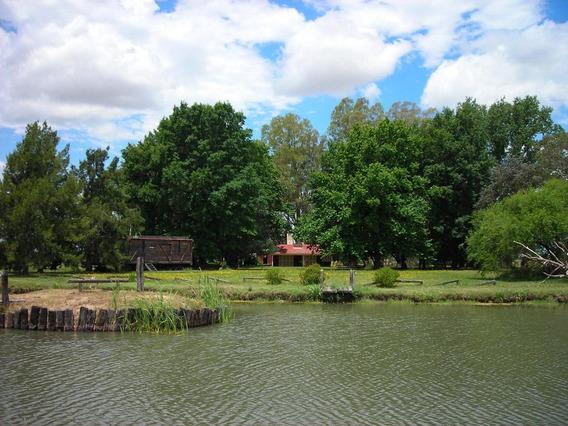 Campos En Venta - 86 Ha En Lobos, Provincia De Buenos Aires -estanzuela Con Casco Y Parque, Ideal Fin De Semana