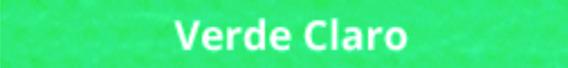 1000 Sacolinhas- Lava-rapido / Lixocar Personalizadas