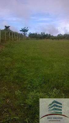 Terreno A Venda Em Cobe, Distrito De Vera Cruz