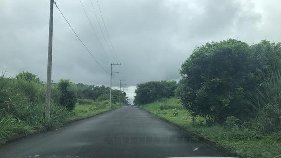 Vento Terreno En Santo Domingo 1000m2