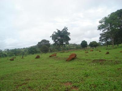 Fazenda Em Novo Acordo - To, P/ Pecuária - 270