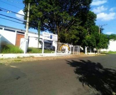 Galpão Comercial Para Locação, Parque Paulistano, Bauru. - Ga0061