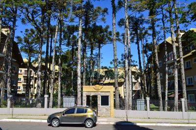 Apartamento Residencial À Venda, Carniel, Gramado - Ap0593. - Ap0593