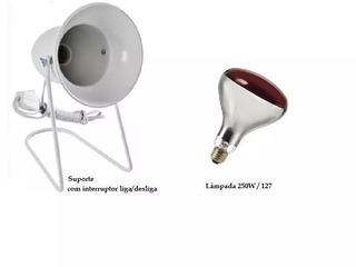 Kit Fisioterapia Suporte Infra + Lampada Ilumatel 250w 127v