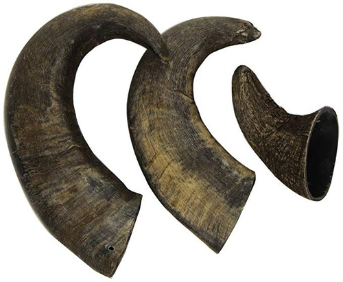 Imagen 1 de 6 de Outback Jack Búfalo De Agua Bully Horns 100% Naturales Golos