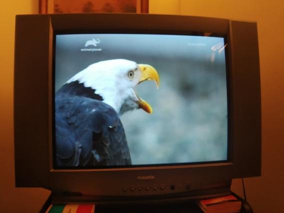 Televisor De Tubo Panavox 29 Pulgadas Impecable