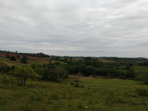 Chácara 9.740 M² - Vira Machado - Gravataí - Rs - 2307 - 34803010