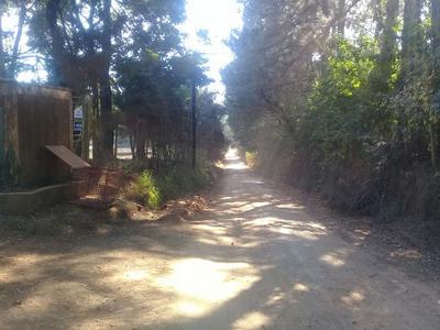 Rural Para Venda, 3 Dormitórios, Pinhal - Cabreúva - 197