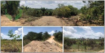 Terreno À Venda, 841500 M² Por R$ 8.000.000,00 - Aleixo - Manaus/am - Te0102