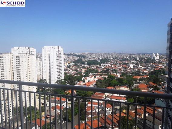 Bosque Marajoara - Mr63790