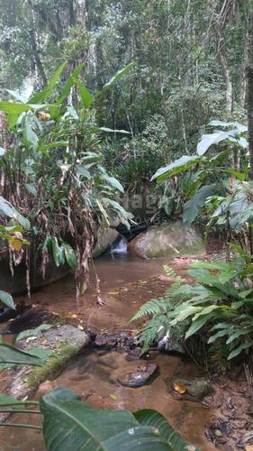 Imagem 1 de 9 de Terreno Rural Para Chácara À Venda Em Canelinha/sc - 1675c
