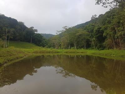 Sitio Chacara Miracatu Lindo Otimo Investimento