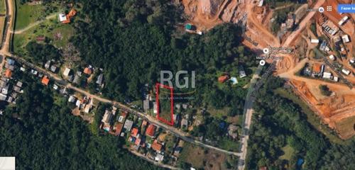 Terreno Em Vila Nova - El50873765