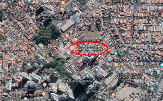 Rua Das Palmeiras, Gopouva, Guarulhos - 437781