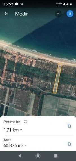 Área Para Venda Em Feliz Deserto, Zona Rural - Ar - 099_1-1255115
