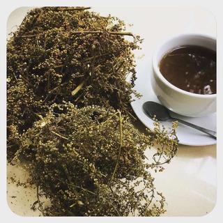 Artemisia Annua (ajenjo Dulce) En Hierbas, Listo Para Té