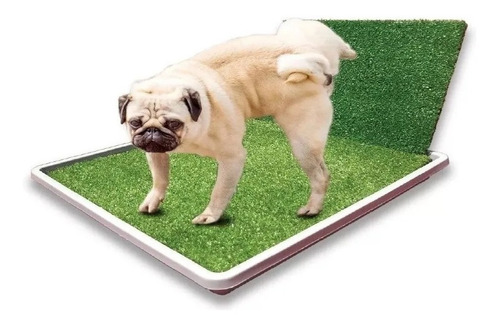 Bandeja Sanitaria C/acc Macho Perros Cachorros Mascotas