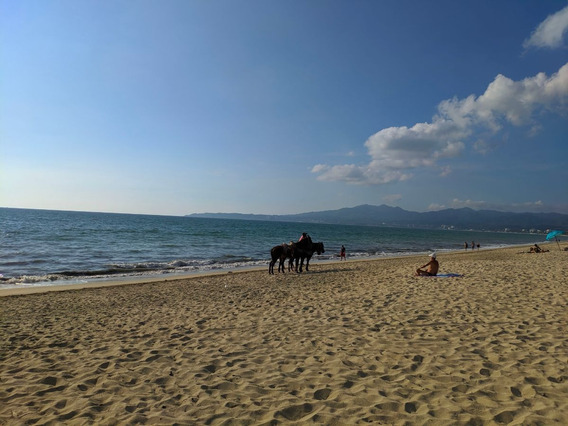 Beachfront Development With Views To The Sea, Luxury Condos
